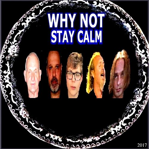 Play & Download Stay Calm by Why Not | Napster