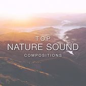 Play & Download Top Nature Sound Compositions by Various Artists | Napster