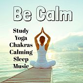 Be Calm - Study Yoga Chakras Calming Sleep Music with Meditative Relaxing Instrumental Bio Energy Healing Sounds by Sleep Music Piano Relaxation