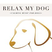 Play & Download Relax my Dog: Calming Music for Dogs by Various Artists | Napster
