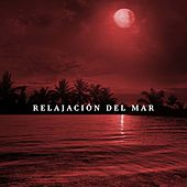 Relajacion Del Mar - Musica para Despertar by Various Artists