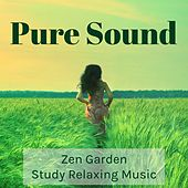 Play & Download Pure Sound - Zen Garden Study Relaxing Music for Mind Workout Deep Focus Sleep Remedies with Nature Instrumental Wellness Sounds by Zen Music Garden   Napster