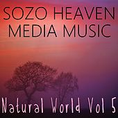 Play & Download Natural World, Vol. 5 by Sozo Heaven | Napster