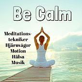 Be Calm - Meditationstekniker Hjärnvågor Motion Hälsa Musik med Instrumental Meditativ Binaural Ljud by Sleep Music Piano Relaxation