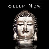 Play & Download Sleep Now - This Music Is Designed to Help You Relax and Sleep by Various Artists | Napster