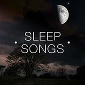 Sleep Songs - The Most Amazing Music that Puts Your Nervous System To Sleep by Various Artists