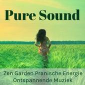 Play & Download Pure Sound - Zen Garden Pranische Energie Ontspannende Muziek voor Vipassana Meditatie Helende met Zachte new Age Instrumentale Geluiden by Zen Music Garden   Napster