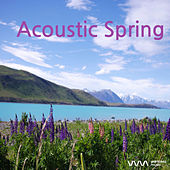 Play & Download Acoustic Spring by Various Artists | Napster