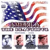 America the Beautiful von Various Artists