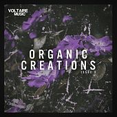 Organic Creations Issue 3 by Various Artists