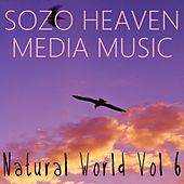 Play & Download Natural World, Vol. 6 by Sozo Heaven | Napster