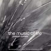 Play & Download The Music of Life by Various Artists | Napster
