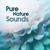 Pure Nature Sounds – Relaxation Music for Massage, Spa Music, Wellness Treatment, Instrumental Music, Spa Lounge by Relaxed Piano Music
