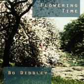 Flowering Time von Bo Diddley