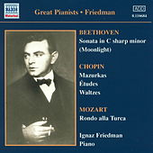 Play & Download Great Pianists : Ignaz Friedman by Various Artists | Napster