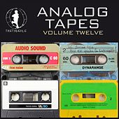 Play & Download Analog Tapes 12 - Minimal Tech House Experience by Various Artists | Napster