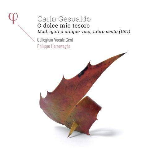 Gesualdo: Madrigals, Book 6 by Collegium Vocale Gent