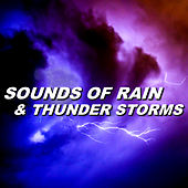 Sounds of Rain & Thunder Storms by Sounds of Rain