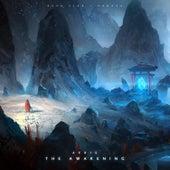 The Awakening by Aeris