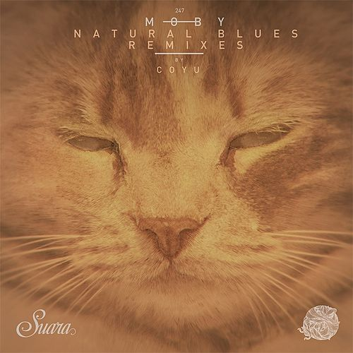Natural Blues (Coyu Remix) von Moby