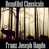 Play & Download Beautiful Classicals: Franz Joseph Haydn by Franz Joseph Haydn | Napster