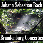Johann Sebastian Bach: Brandenburg Concerto's by Johann Sebastian Bach