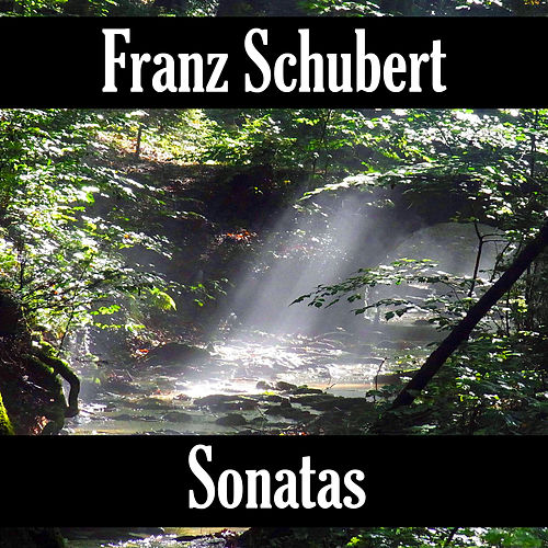 Play & Download Franz Schubert: Sonatas by Franz Schubert | Napster
