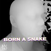 Born A Snake - Single by P.O.S (hip-hop)