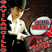 Play & Download 24 Grandes Exitos by Saul Viera el Gavilancillo | Napster