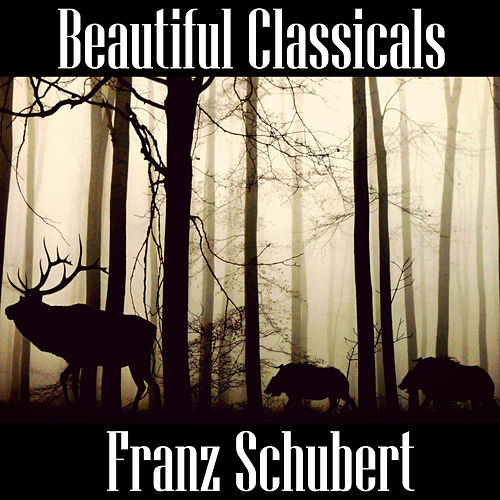 Play & Download Beautiful Classicals: Franz Schubert by Franz Schubert | Napster