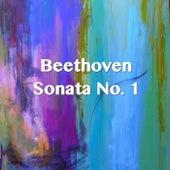 Beethoven Sonata No. 1 by Joseph Alenin