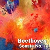 Beethoven Sonata No. 12 by Joseph Alenin