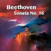 Beethoven Sonata No. 16 by Joseph Alenin