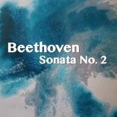 Beethoven Sonata No. 2 by Joseph Alenin