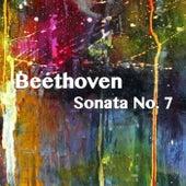 Beethoven Sonata No. 7 by Joseph Alenin