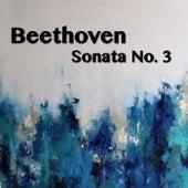 Beethoven Sonata No. 3 by Joseph Alenin