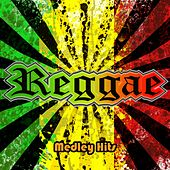 Reggae Time Medley 2: All That She Wants / Summer Summer / Sweat / Reggae Night / Sexual Healing / Do You Feel My Love / Informer / Stop That Train / El Menaito / Could You Be Loved / Now That We Found Love / Iron Lion Zion by Disco Fever