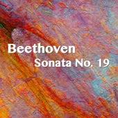 Beethoven Sonata No. 19 by Joseph Alenin