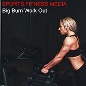 Play & Download Big Burn Work Out by Various Artists | Napster