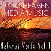 Play & Download Natural World, Vol. 7 by Sozo Heaven | Napster