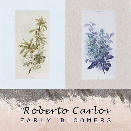 Early Bloomers de Roberto Carlos
