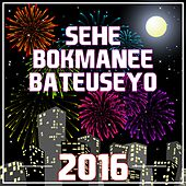 Sehe Bokmanee Bateuseyo 2016 by Various Artists