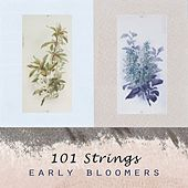 Early Bloomers by 101 Strings Orchestra