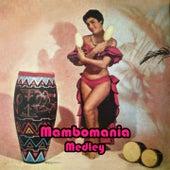 Mambomania Medley. Johnny'S Mambo / Mambo Margarita / Patricia / Amante Latino / In a Little Spanish Town / Mambo 5 / De Tod un Poco / El Abrillantador / Estrellita / Tiempo de Mambo / Mambo Paradiso / La Bailarina / Mambo de la Luz / Ronny'S Mambo / by Extra Latino
