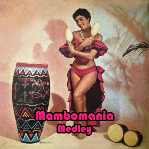 Play & Download Mambomania Medley. Johnny'S Mambo / Mambo Margarita / Patricia / Amante Latino / In a Little Spanish Town / Mambo 5 / De Tod un Poco / El Abrillantador / Estrellita / Tiempo de Mambo / Mambo Paradiso / La Bailarina / Mambo de la Luz / Ronny'S Mambo / by Extra Latino | Napster