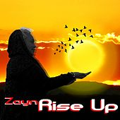 Rise Up de ZAYN