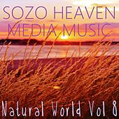 Play & Download Natural World, Vol. 8 by Sozo Heaven | Napster