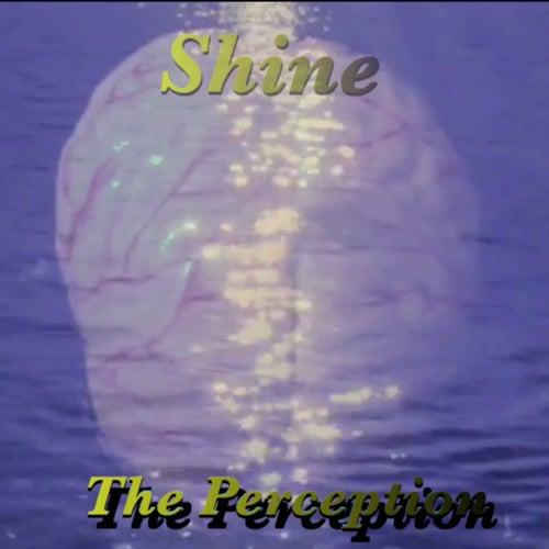 Shine by Perception