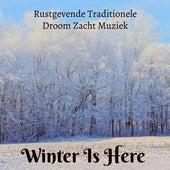 Play & Download Winter Is Here - Rustgevende Traditionele Droom Zacht Muziek voor Kerstdiner Mindfulness Therapie Stress Verminderen met Instrumentale New Age Natuur Geluiden by Santa Clause | Napster