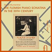 Play & Download The Flemish Piano Sonatina in the 20th Century by Daniel Blumenthal | Napster